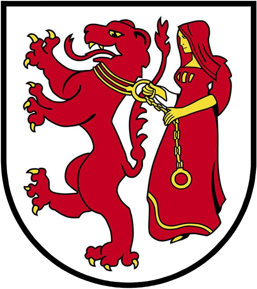 SVP Frauenfeld